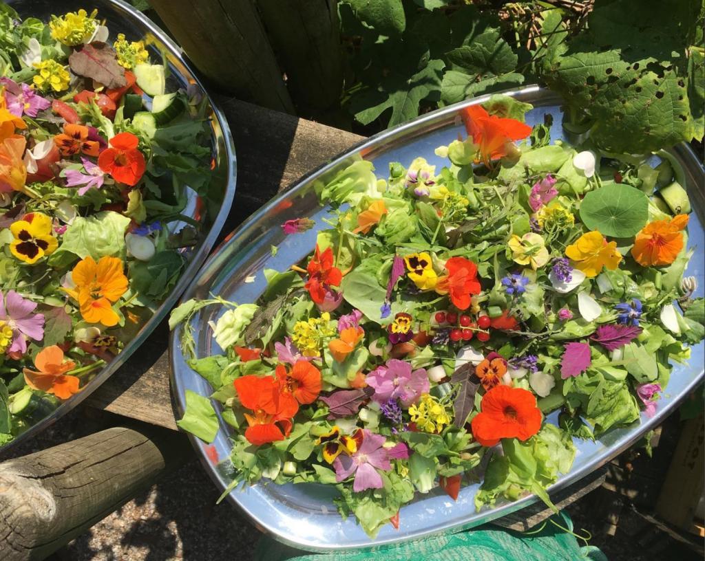 amstelglorie-eetbare-bloemen-salade